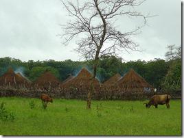 PUEBLO DE LA SAVANA-GUINEA-BISSAU-EL CRISOL DE LA CORDURA